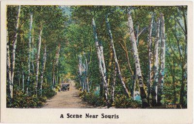, A Scene Near Souris (0562), PEI Postcards