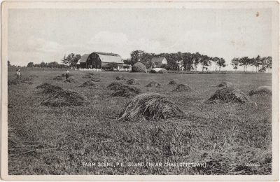 , Farm Scene, P.E. Island (Near Charlottetown) (0183), PEI Postcards