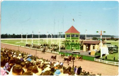 """, Horses step high on the smooth Charlottetown Driving Park track during """"Old Home Week"""". (0388), PEI Postcards"""