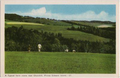 , A Typical farm scene near Churchilll, Prince Edward Island. (0522), PEI Postcards
