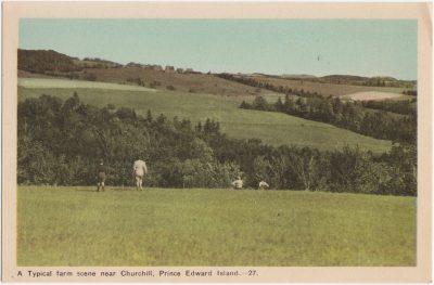 , A Typical farm scene near Churchill, Prince Edward Island. (0524), PEI Postcards