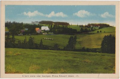 , A farm scene near Cardigan, Prince Edward Island. (0527), PEI Postcards