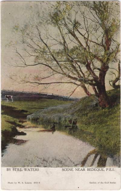 , By Still Waters Scene near Bedeque, P.E.I. (0669), PEI Postcards