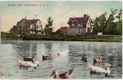 , Brighton Pond, Charlottetown, P.E.I. (0826), PEI Postcards