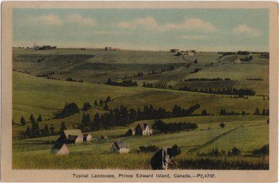 , Typical Landscape, Prince Edward Island, Canada. (0781), PEI Postcards