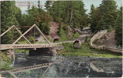 , Pastoral Scene, Prince Edward Island (0787), PEI Postcards