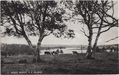 , West River, P.E. Island. (0809), PEI Postcards