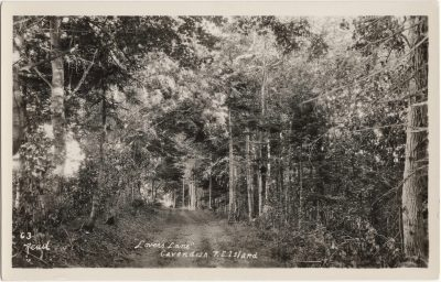 ", ""Lovers Lane"" Cavendish P.E. Island. (0896), PEI Postcards"
