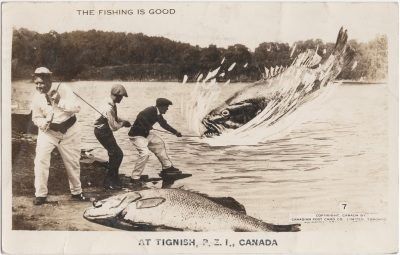 , The Fishing is Good at Tignish, P.E.I., Canada (0972), PEI Postcards