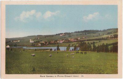 , Rural Scenery in Prince Edward Island (0948), PEI Postcards