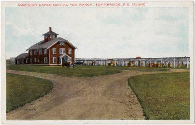 , Dominion Experimental Fox Ranch, Summerside, P.E. Island (0054), PEI Postcards