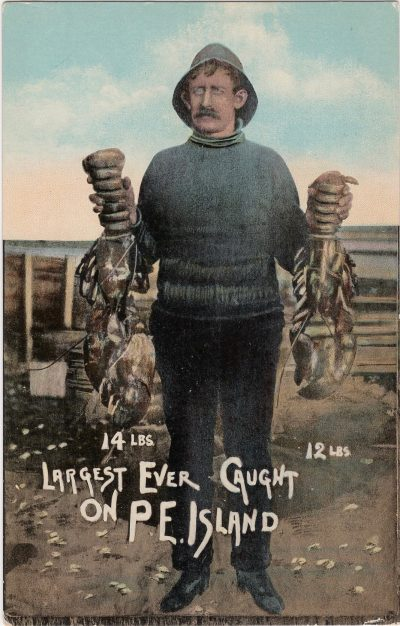 , 14 lbs. 12 lbs. Largest ever caught on P.E. Island (0102), PEI Postcards