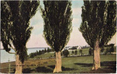 , Lower Montague, P.E.I. (0997), PEI Postcards