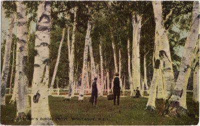 , McGregor's Birch Grove, Montague, P.E.I. (0999), PEI Postcards