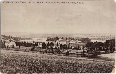 , Home of the Trout, McLures Mill Ponds, Murray River, P.E.I. (0983), PEI Postcards