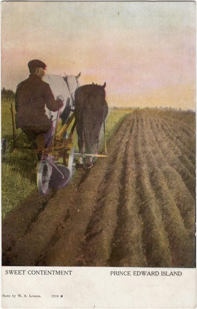 , Sweet Contentment Prince Edward Island (1004), PEI Postcards