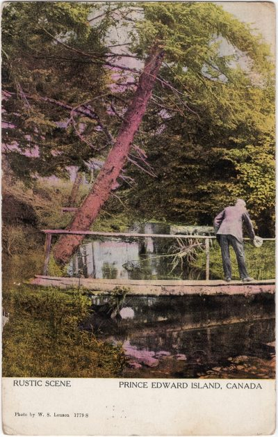 , Rustic Scene Prince Edward Island, Canada (1082), PEI Postcards
