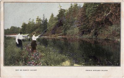 , Not so easily caught. Prince Edward Island (1051), PEI Postcards