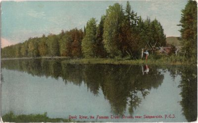 , Dunk River, the Famous Trout Stream, near Summerside, P.E.i. (1109), PEI Postcards