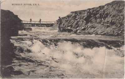 , Murray River, P.E.I. (1154), PEI Postcards