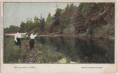 , Not So Easily Caught Prince Edward Island (1163), PEI Postcards