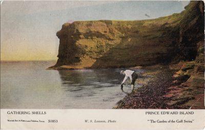 , Gathering Shells Prince Edward Island (1162), PEI Postcards