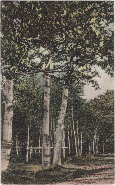 , The Three Sisters in Victoria Park Charlottetown, P.E.I. (1146), PEI Postcards