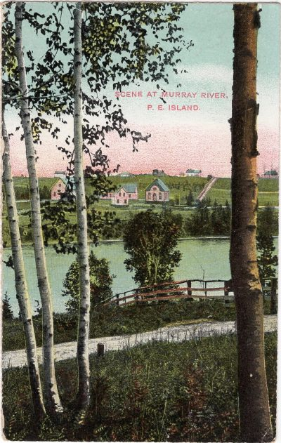 , Scene at Murray River, P.E. Island. (1194), PEI Postcards