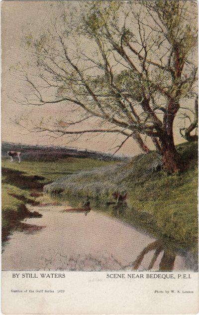 , By Still Waters Scene Near Bedeque, P.E.I. (1215), PEI Postcards