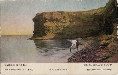 , Gathering Shells Prince Edward Island (1247), PEI Postcards