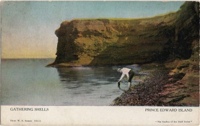 , Gathering Shells Prince Edward Island (1248), PEI Postcards