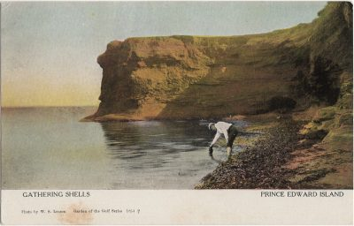 , Gathering Shells Prince Edward Island (1249), PEI Postcards