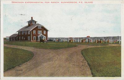 , Dominion Experimental Fox Ranch, Summerside, P.E. Island (1279), PEI Postcards