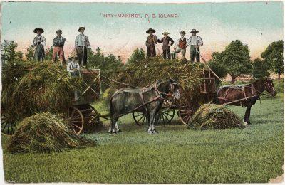 ", ""Hay-Making:, P.E. Island. (1319), PEI Postcards"
