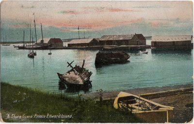", ""A Shore Scene."" Prince Edward Island. (1351), PEI Postcards"
