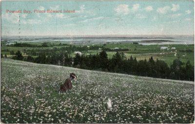 , Pownall Bay, Prince Edward Island (1370), PEI Postcards