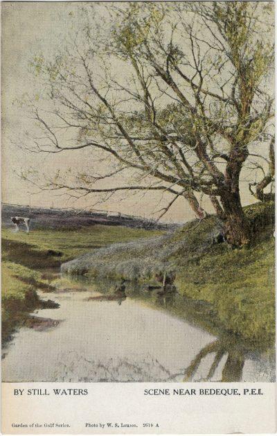 , By Still Waters. Scene Near Bedeque, P.E.I. (1440), PEI Postcards