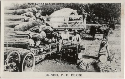 , How corny can we get? Tignish, P.E. Island. (1430), PEI Postcards