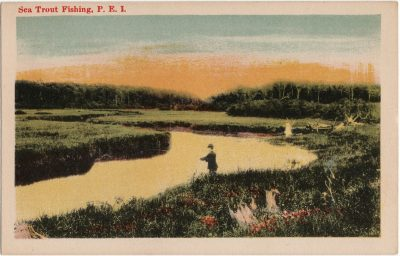 , Sea Trout Fishing, P.E.I. (1407), PEI Postcards