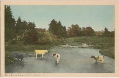 , Rural Prince Edward Island, Canada (1482), PEI Postcards