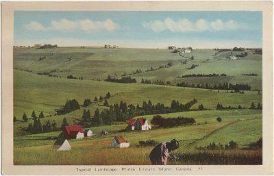 , Typical Landscape. Prince Edward Island, Canada. (1494), PEI Postcards