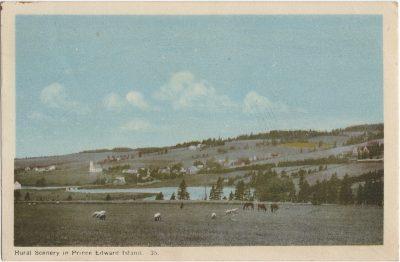 , Rural Scenery in Prince Edward Island. (1496), PEI Postcards
