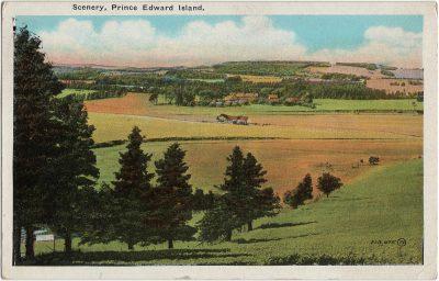 , Scenery, Prince Edward Island. (1497), PEI Postcards