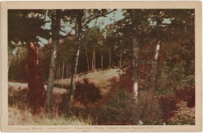 """, The Haunted Woods, """"Green Gables"""", Cavendish, Prince Edward Island National Park. (1500), PEI Postcards"""