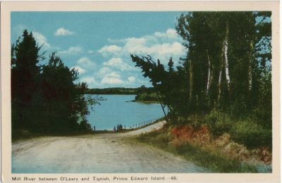, Mill River between O'Leary and Tignish, Prince Edward Island. (1505), PEI Postcards