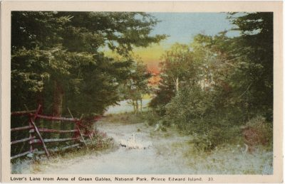 , Lover's Lane from Anne of Green Gables, National Park, Prince Edward Island. (1513), PEI Postcards