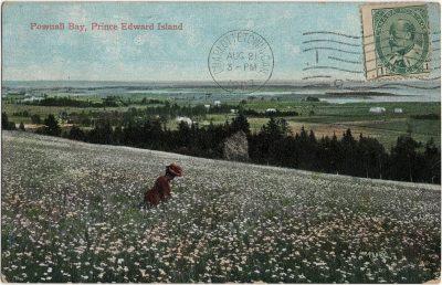, Pownall Bay, Prince Edward Island (1587), PEI Postcards