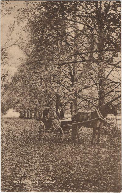 , Autumn in Canada (1591), PEI Postcards