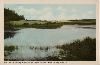 , The Lake of Shining Waters in the Prince Edward Island National Park. (1613), PEI Postcards