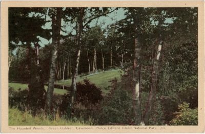 """, The Haunted Woods, """"Green Gables"""", Cavendish, Prince Edward Island National Park. (1629), PEI Postcards"""